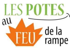 logo_pafdlr